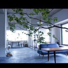 部屋全体/モルタルの床/塩系インテリア/塩系インテリアの会/NOGREEN NOLIFE/IGと同じpic!…などのインテリア実例 - 2015-06-09 18:55:35 | RoomClip(ルームクリップ)