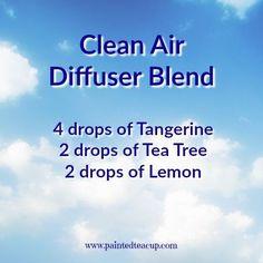 Clean air diffuser blend