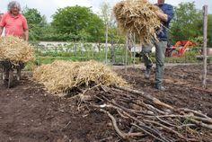 – Réaliser un potager en carré, façon permaculture | Ma passion du verger