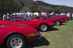 Ferrari Daytonas. From the Concorso Italiano 2012 photo gallery.