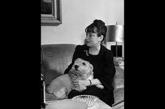 Dorothy Parker with her handsome Sealyham terrier in her lap while sitting on the couch