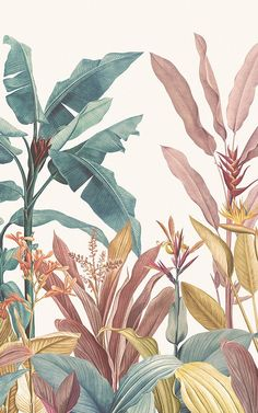 Welcome fresh tropicals into your space full of stylish tone and detail, with the Dusty Pink and Teal Vintage Tropical Minimalist Wallpaper Mural. With large scale tropical leaves inspired by the… Art And Illustration, Pattern Illustration, Vintage Botanical Illustration, Nature Illustrations, Watercolor Illustration, Cute Wallpapers, Wallpaper Backgrounds, Plant Wallpaper, Leaves Wallpaper