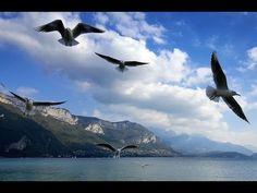 Recours hiérarchique – DUP CESC sur la Presqu'île d'Albigny C2A Annecy
