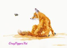 Bee Entranced.  A young fox is interrupted in his grooming by a buzzy busybody.