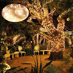 Warm White 30M 300LED String Fairy Lights Christmas Xmas Party Indoor/Outdoor
