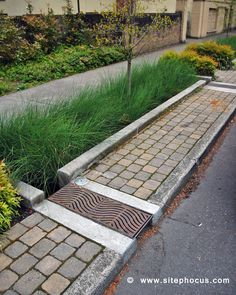 https://flic.kr/p/51jzKt | 12th Avenue-Portland-003 | 12th Avenue Green Street featuring bioswales near the Portland State University campus.