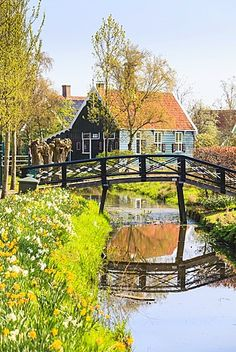 Preserved historic houses in Zaanse Schans, a village and working museum on the banks of the river Zaan, near Amsterdam, Zaandam, North Holland, Netherlands, Europe