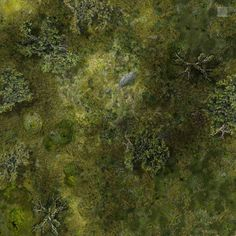 This battle map was created using items from the Dundjinni forums and my own techniques in Photoshop. It is perfect for a surprise encounter in a marshy area. The square in the corner represents 5 ...