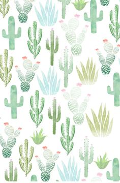 I frickin' love cacti wallpaper Pattern Wallpaper Iphone, Iphone Wallpaper Summer, Wallpaper Iphone Quotes Backgrounds, Free Phone Wallpaper, Wallpaper Wallpapers, Iphone Wallpapers, Wallpaper Free Download, Tumblr Wallpaper, Summer Wallpapers For Iphone