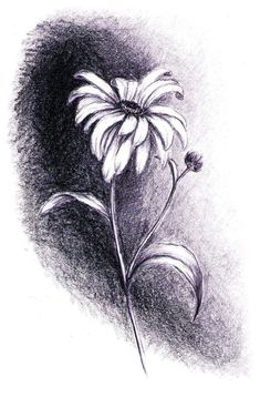 Image result for one stem daisy tattoo