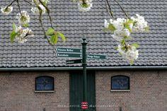 Bloesem voor de Jachtkamer, een van de vergaderlocaties op landgoed Heerlijkheid Mariënwaerdt www.marienwaerdt.nl