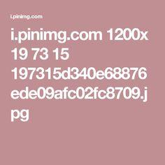 i.pinimg.com 1200x 19 73 15 197315d340e68876ede09afc02fc8709.jpg