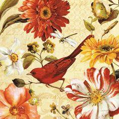 Rainbow Garden Spice III  by Lisa Audit - Art Print Framed & Unframed at www.framedartbytilliams.com
