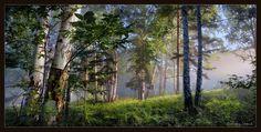 Соловьиное утро фото картинки: 20 тыс изображений найдено в Яндекс.Картинках