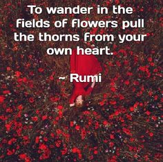 To wander in the fields of flowers pull the thorns from your heart. - Rumi  sufi mystic and persian poet