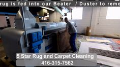 Pre washing rug at plant, by in Toronto Star Rug, Rug Cleaning, How To Clean Carpet, Toronto, Rugs, Videos, Plants, Cleaning Carpets, Cleaning Area Rugs