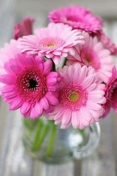 Exotic Flowers, Amazing Flowers, Beautiful Roses, Beautiful Flowers, Rose Arrangements, Beautiful Flower Arrangements, Flower Images, Flower Pictures, Butterfly Flowers