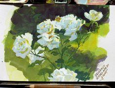 Descanso Roses, gouache, 5x8 in.