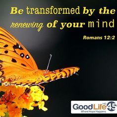 Romans 12:2 #christianquotes #scripture #inspirational #quotes