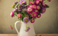 make cut flowers last longer