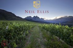 Neil Ellis - South Africa Wine Vineyards, Wine Country, Fast Cars, Wines, South Africa, Beautiful Places, Mountains, World, Pictures