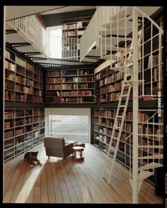 Private library in a house in Zurich