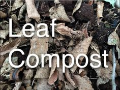 Build Soil Fertility with Leaf Based Compost made from Free and Local Re...