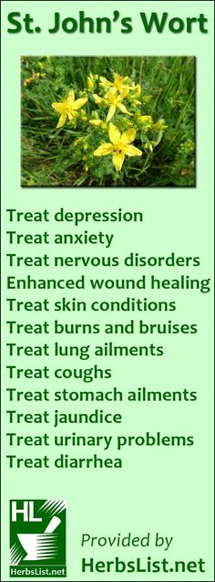 St. John's Wort Uses. Please do NOT use St John's Wort if you are already taking antidepressant medication or receiving treatment for cancer... https://www.fiverr.com/healthy_guru