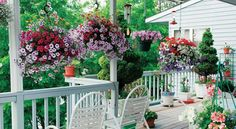 Hanging Planters  -  Hanging planters are the absolute decoration for your balcony or deck. Hanging planters are plant pots with rope, cord or chain added. These types of ...