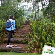 El Parque Nacional El Boquerón es un área protegida que se encuentra en la parte superior del Volcán de San Salvador