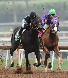 California Chrome and Shared Belief