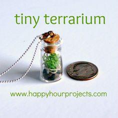 Bottle Jewellery - Tiny Terrarium