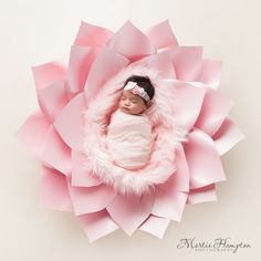 Inspiration For New Born Baby Photography : baby pictures newborn photography photographer frisco texas. martie hampton phot naissance part naissance bebe faire part felicitation baby boy clothes girl tips