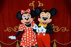 I need to draw it because my daughter's friend has a cousin who is going to marry so she requested me to draw Mickey and Minnie marring. Mickey and Minnie Disney Photo Pass, Disney Love, Disney Magic, Disney Stuff, Mickey Mouse Y Amigos, Mickey Mouse And Friends, Minnie Mouse, Original Mickey Mouse Club, Walt Disney World Orlando
