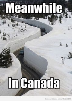 """A photo gallery of the best, greatest, and funniest snow memes of all time. These memes about snow will definitely make you say, """"Dude, Snow Way! Canada Funny, Canada Eh, Canada Jokes, Canada Snow, Meanwhile In Canada, Mario Bros, Funny Moments, Best Memes, Funniest Memes"""
