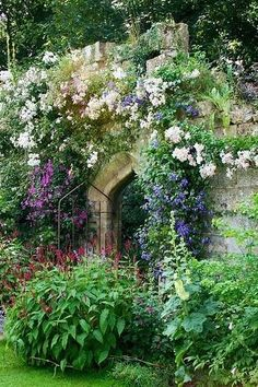 janetmillslove:Old English Garden C moment love