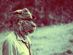 Human-like Wild Animals