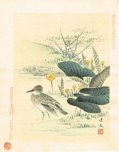 1894 Japanese Woodblock print antique Matsumura Keibun