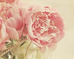 .Peonies take my breath away in springtime! I wish they could bloom all summer!