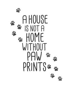Brewster 19 Piece Home With Paw Prints Wall Decorating Kit Black Wall Coverings Adhesives Wall Decorating Kits Dog Quotes, Animal Quotes, Wall Quotes, Funny Quotes, Quotes About Dogs, Qoutes, Life Quotes, Quote Prints, Wall Art Prints