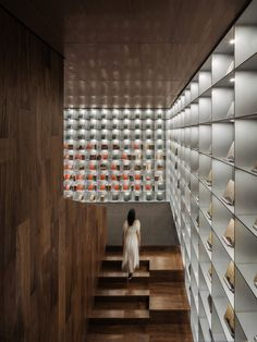 Reproductions of rare books are displayed in a wood-panelled stairwell. Lecture Theatre, Creative Area, Chief Architect, Internal Courtyard, White Pebbles, South African Artists, Blue Colour Palette, Perforated Metal, Cafe Interior