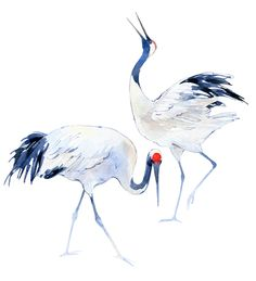 Japanese Crane pattern by Natalia Tyulkina, via Behance