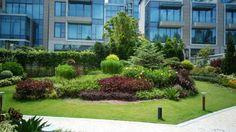 Inspired by Garden of Ninfa, italy. Field Trips, Hong Kong, Tin, Sidewalk, Public, Italy, Inspired, Landscape, Garden