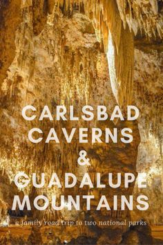 A family-friendly guide to exploring Carlsbad Caverns and Guadalupe National Park with kids, including tips, tricks, and must-do activities.  via @trekaroo