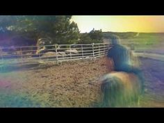YouTube- Riding and training