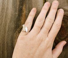 Bird Ring