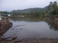 A kayak trip on the Wailua River leads to a hiking path to Secret Falls.