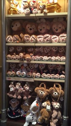 Disneyland Hong Kong Duffy The Disney Bear and Shellie May Merchandise.