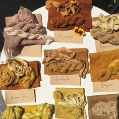 Planting a Dye Garden to Make Your Own Natural Dyes * Coreopsis, Marigold, Yarrow, Madder, Indigo Natural Dye Fabric, Natural Dyeing, Shibori, Tinta Natural, Textiles, Art Textile, How To Dye Fabric, Dyeing Fabric, Fabric Manipulation