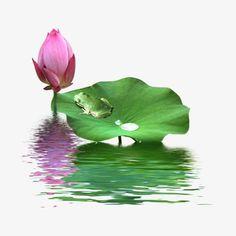 Beautiful Nature Scenes, Beautiful Gif, Psychology Wallpaper, Lotus Vector, Colourful Wallpaper Iphone, Lotus Flower Art, Beautiful Flower Drawings, Lotus Painting, Pichwai Paintings